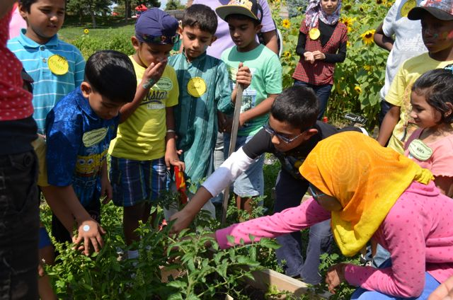 School Garden Survey & Draw Prizes to be Won