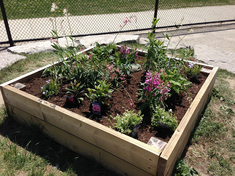 Finished butterfly garden